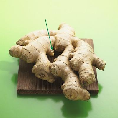 Zenzero- ginger- come coltivare lo zenzero in casa. comment cultiver le gingembre à la maison.